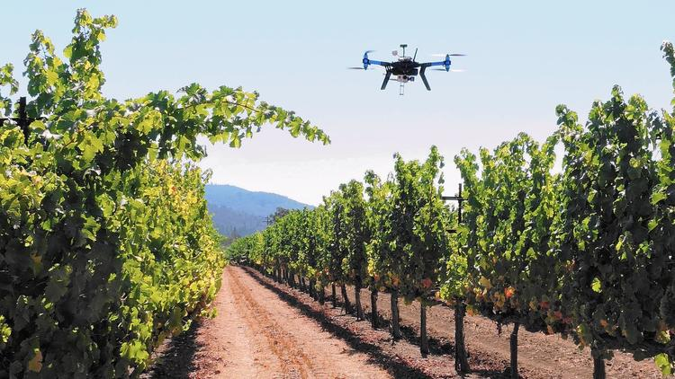 utilization of drones in farms to inspect plants